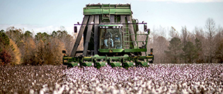 'Cotton Trade Will Be Affected Negatively'